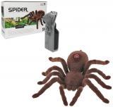 RC Pavouk sklípkan 16cm na vysílačku 2 kanály lozí na baterie Světlo